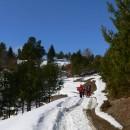 Drumeţie pe dealurile dintre Dofteana şi Dărmăneşti