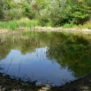 Lacurile de la Slobozia (Oneşti/BC) – Culmea Pietricica/Subcarpaţii Moldovei