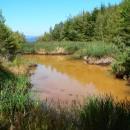 Din Apa Asău (Asău/BC) la lacurile Şantei (Culmea Runcu Stânelor – Munţii Tarcăului)