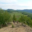 În căutarea Utidavei (pe Dealul Chichilău – Târgu Ocna) !