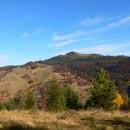 Pe Tașbuga, în Munții Tarcăului, toamna