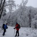 Într-o (primă) zi de iarnă, la Lacul Tarnița din Munții Berzunți