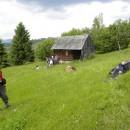 Din Sândominic, la Crucea Condra din Munții Hășmaș