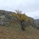 Hai-hui, în miniexpediția din Dobrogea (27-29 martie 2015)