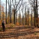 O plimbărică pe Dealurile Oușorului (Subcarpații Vrancei) cu mici surprize: un lăculeț și niște trovănței !