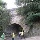 Podurile lui Ștefan cel Mare – erori, mi(s)tificări, … îndreptări !