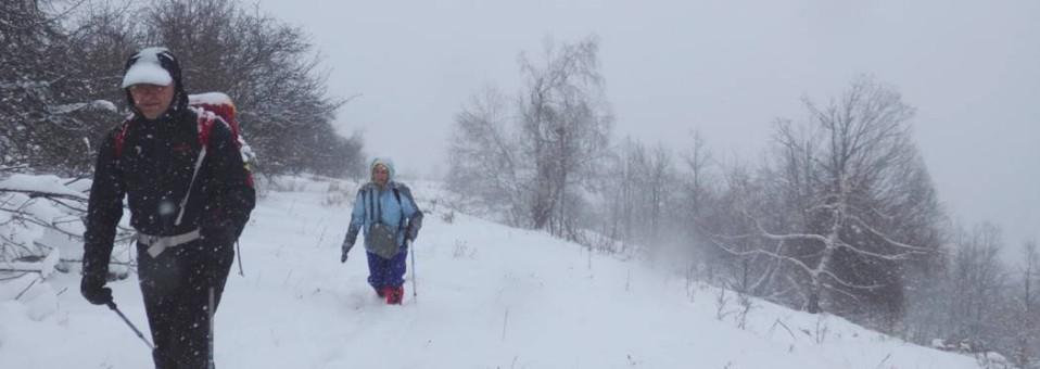 La … plimbare cu … Baba Iarna pe Dealul Cireșoaia (Plaiurile Nemirei) !