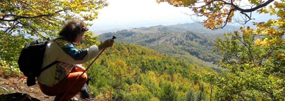 Pe Măgura Berzunțiului – cel mai înalt vârf din munții cei mai mărunți !