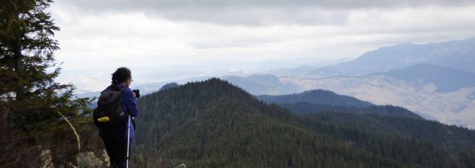 Un munte cu oarece carismă: Măgura Tarcăului !