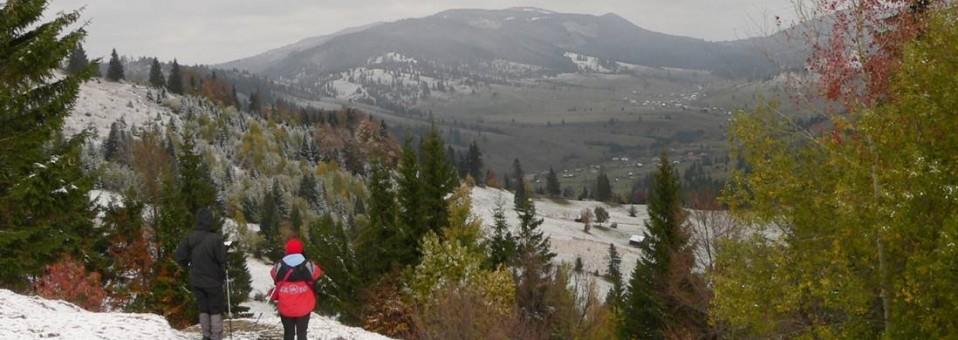 Ciruitul Orodicului din Munții Tarcăului