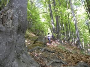 foto:Marelena Pușcarciuc