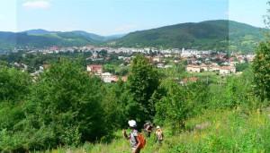 foto: Radu Pușcarciuc